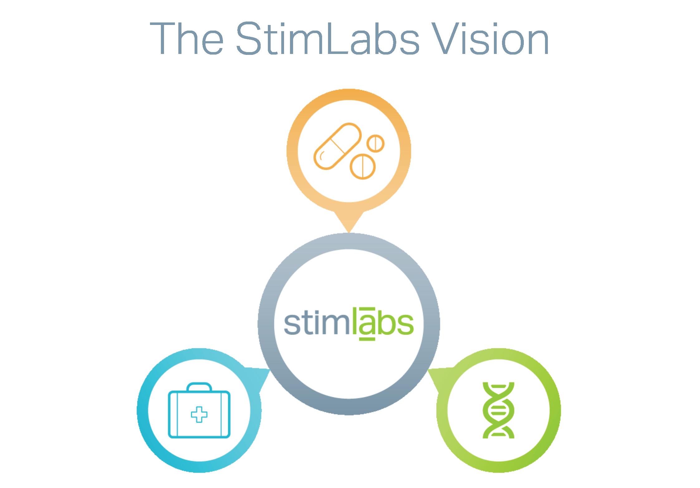 stimlabs_vision.png