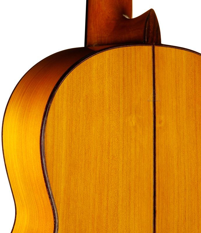 guitar_bac_lg_45.jpg