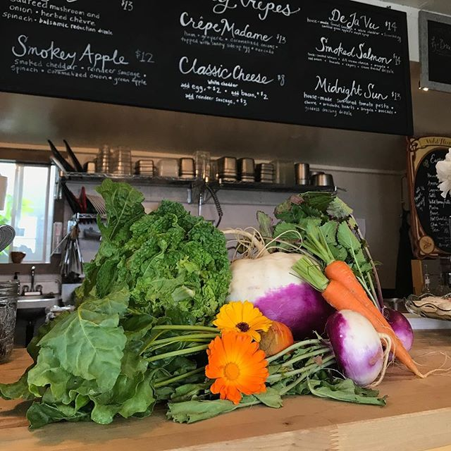 It's feeling very autumnal over here -- pumpkins, and turnips, and beets, oh my! We updating our menu to reflect the season's bounty from our local farmers -- come taste!