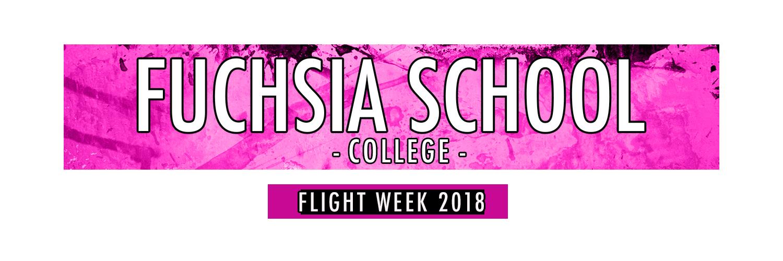 FW19_FlightSchoolHeaders_Fuchsia.png