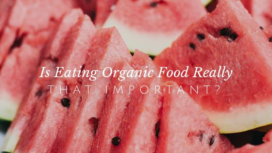Organic Food Header.png
