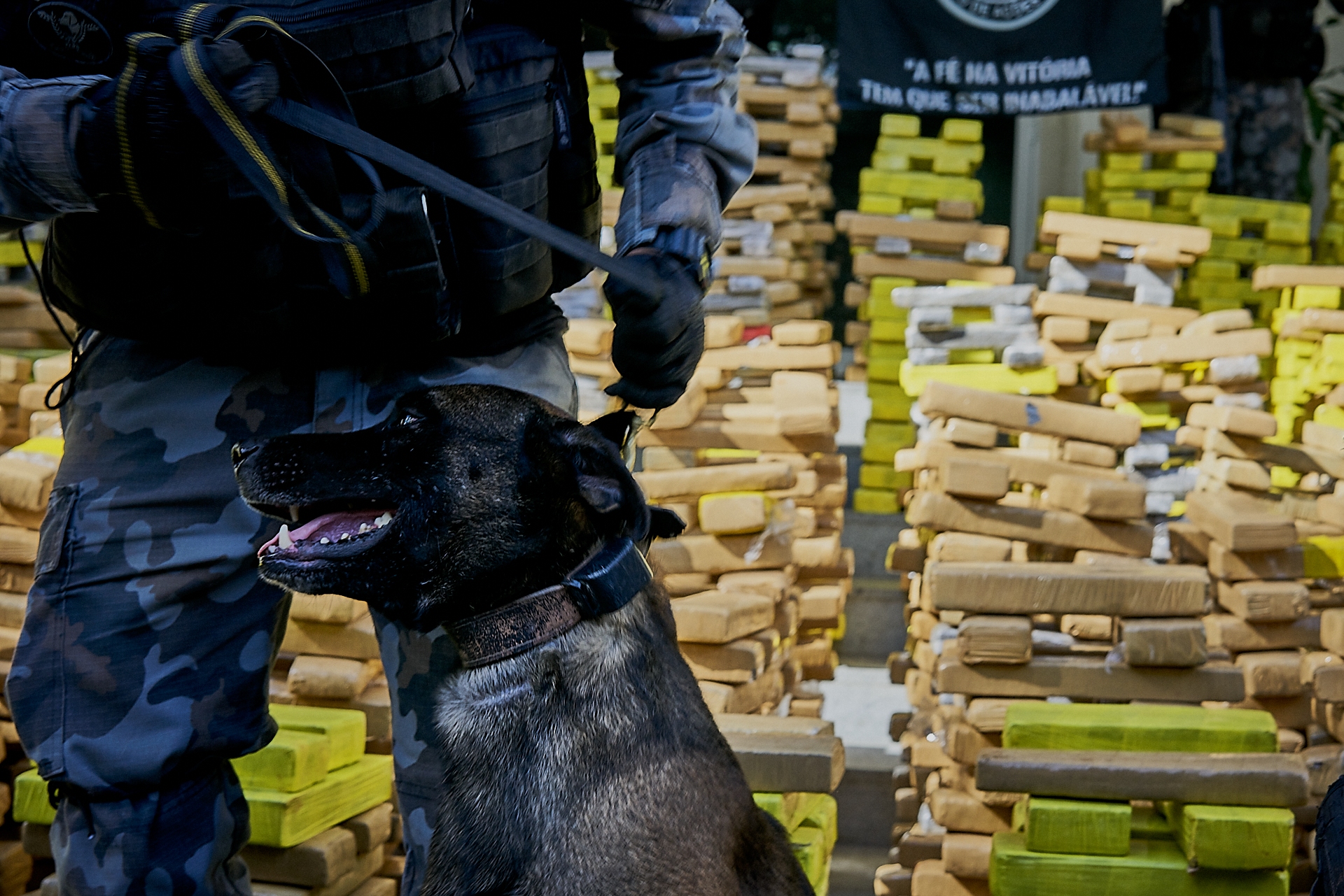 The majority of the drugs were found by Rio's Dog Battalion (Photo: C.H. Gardiner)