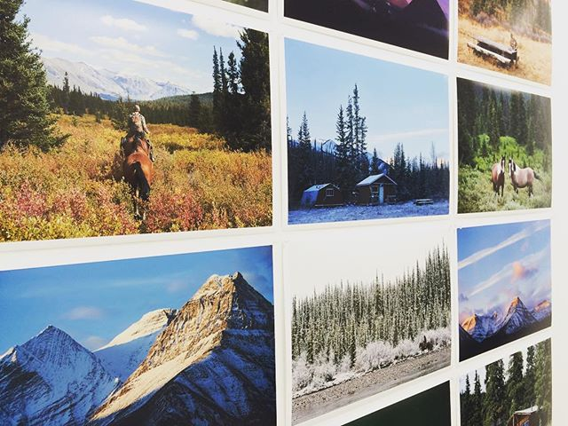 Some of my photos from our adventures in the Canadian Rockies, as part of a group exhibition for the Auckland Festival of Photography last week! #canada #wilderness #exhibition #photographyexhibition #aucklandfestivalofphotography