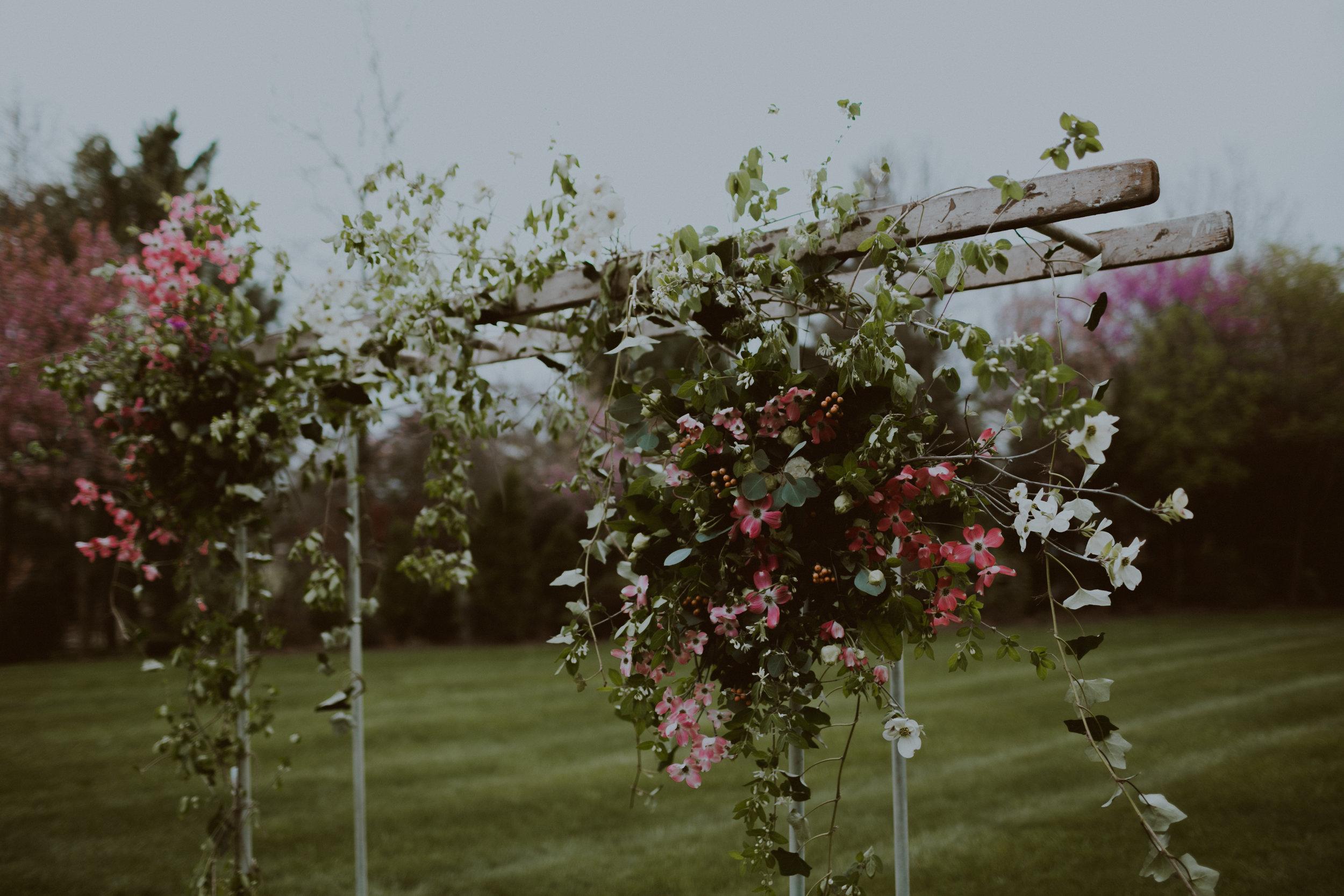 spring-76.jpg