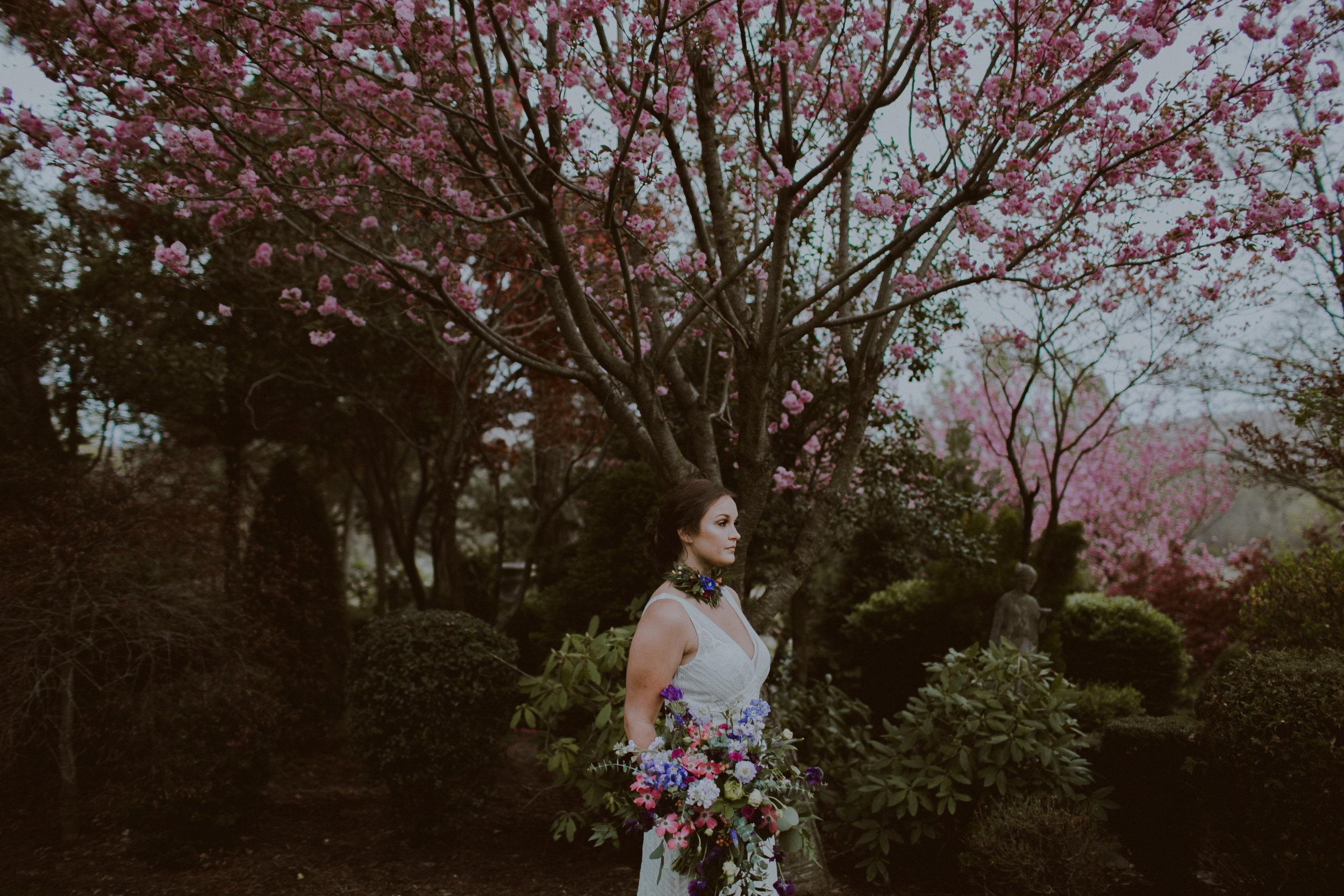 spring-197.jpg