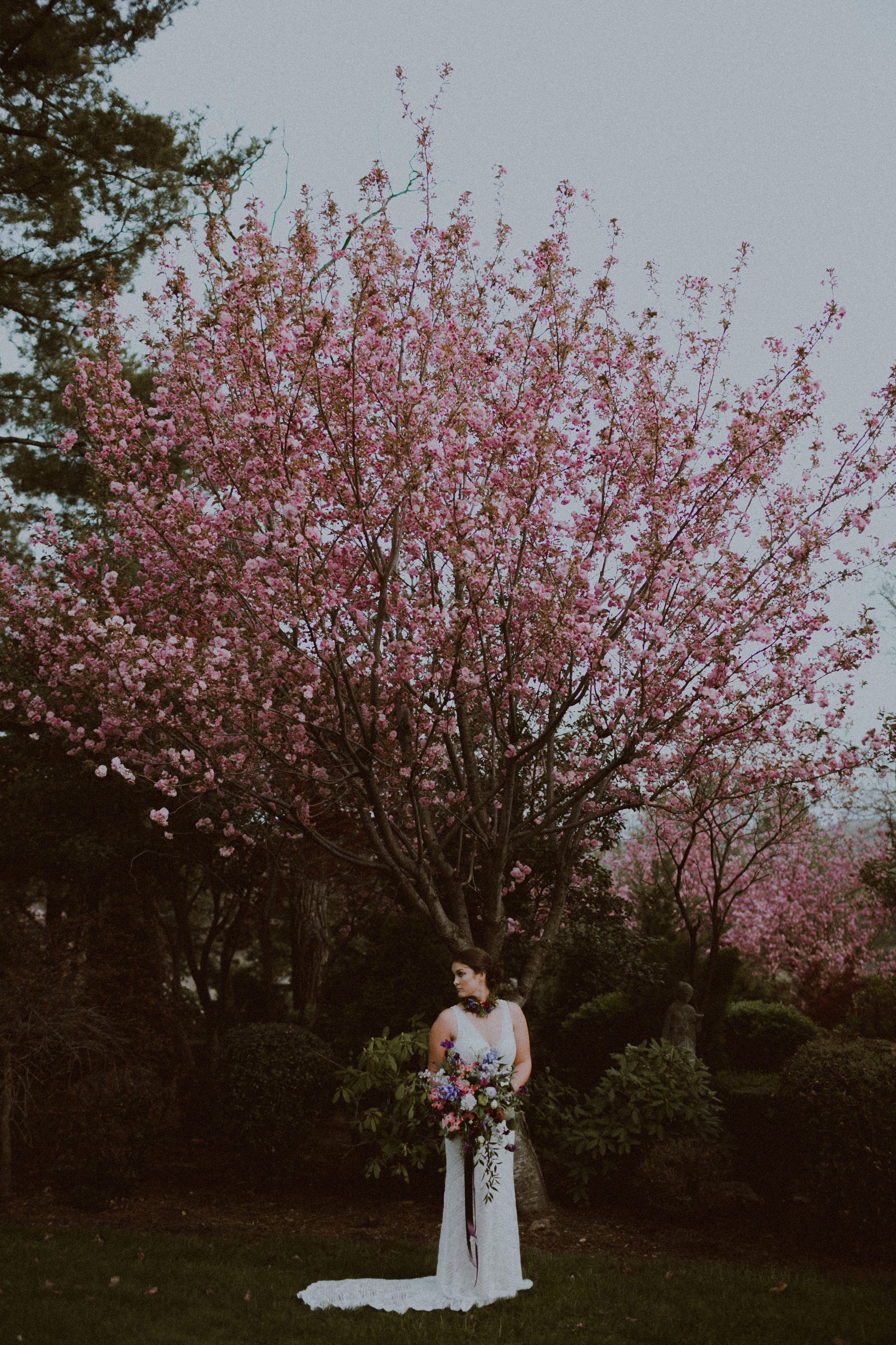 spring-207.jpg