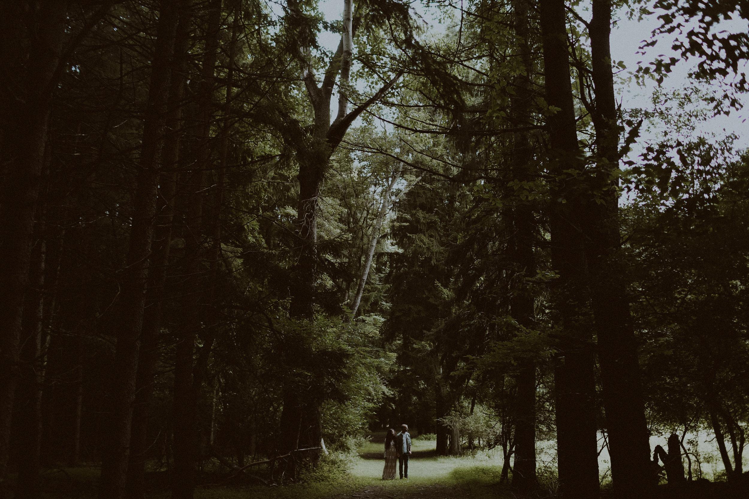 woodsyengagementsession-119.jpg