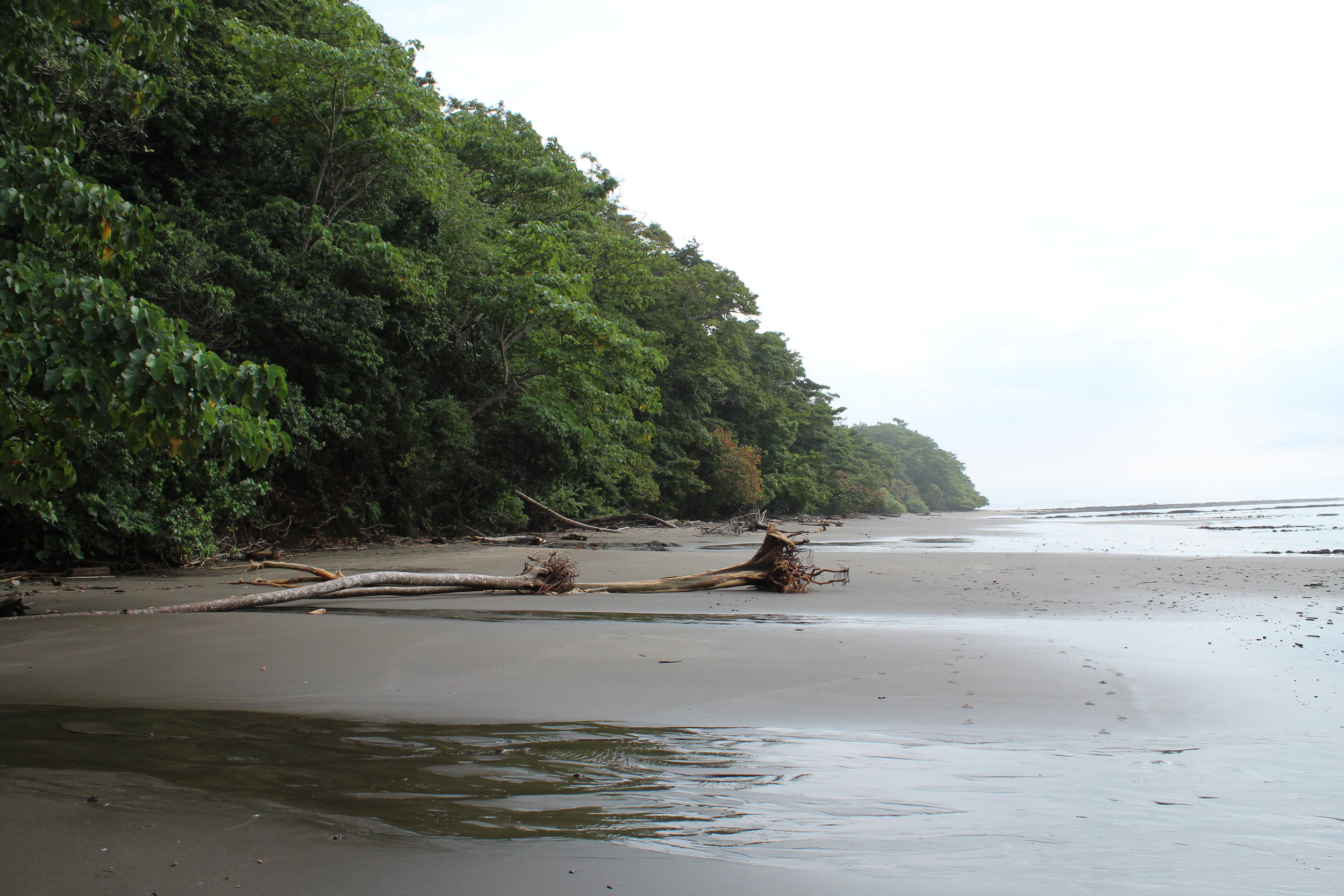 Beach Esterillos Oeste