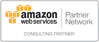 aws consulting badge.png
