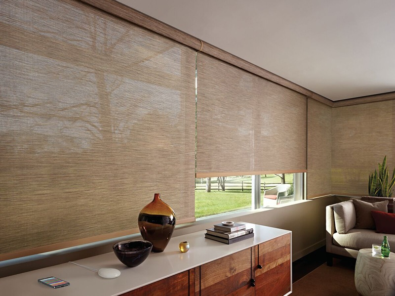 Motorization for Living Rooms from The Blind Guy in Kalispell, Montana (MT)
