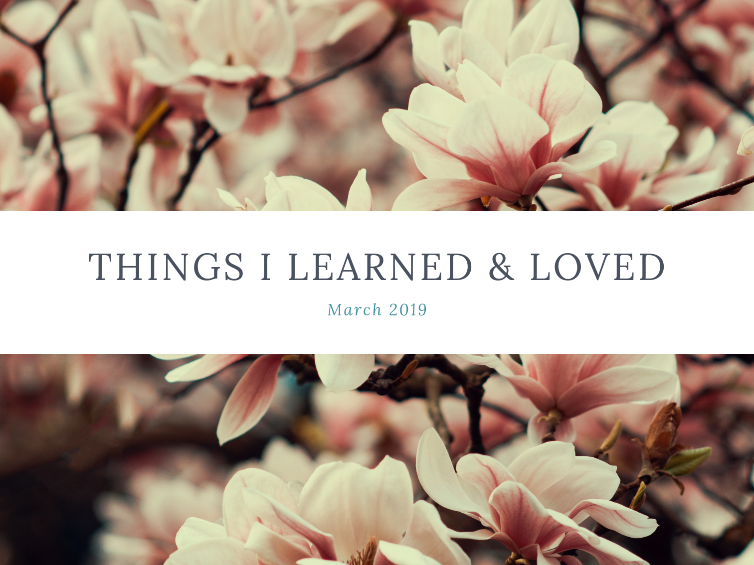laura-rose-creative-things-I-learned-loved-march
