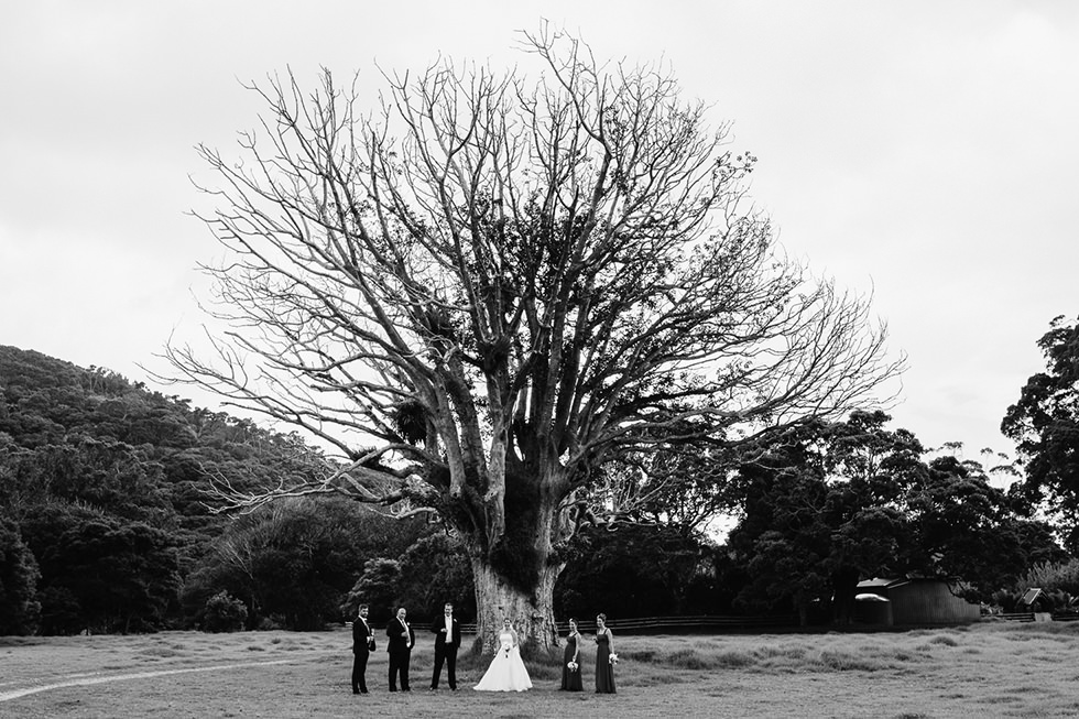 great_barrier_island_wedding_photos1156.jpg