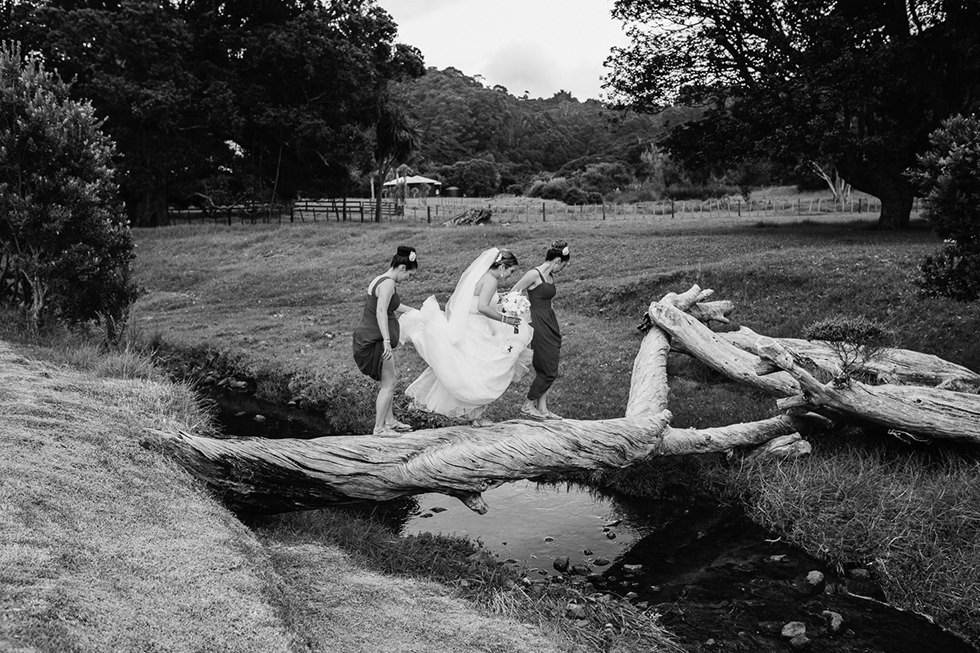 great_barrier_island_wedding_photos1162.jpg