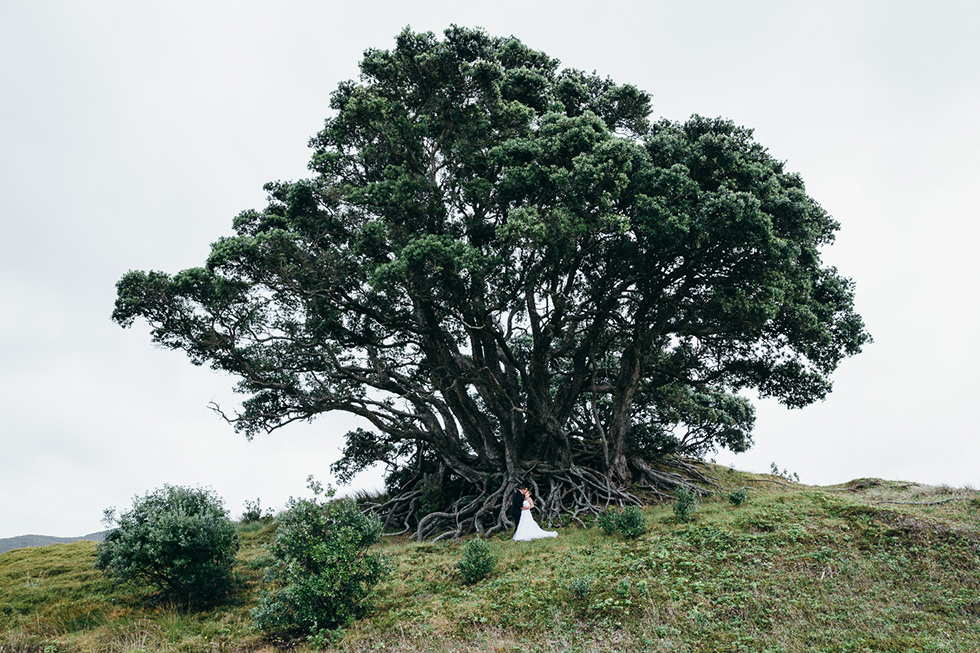 great_barrier_island_wedding_photos1217.jpg