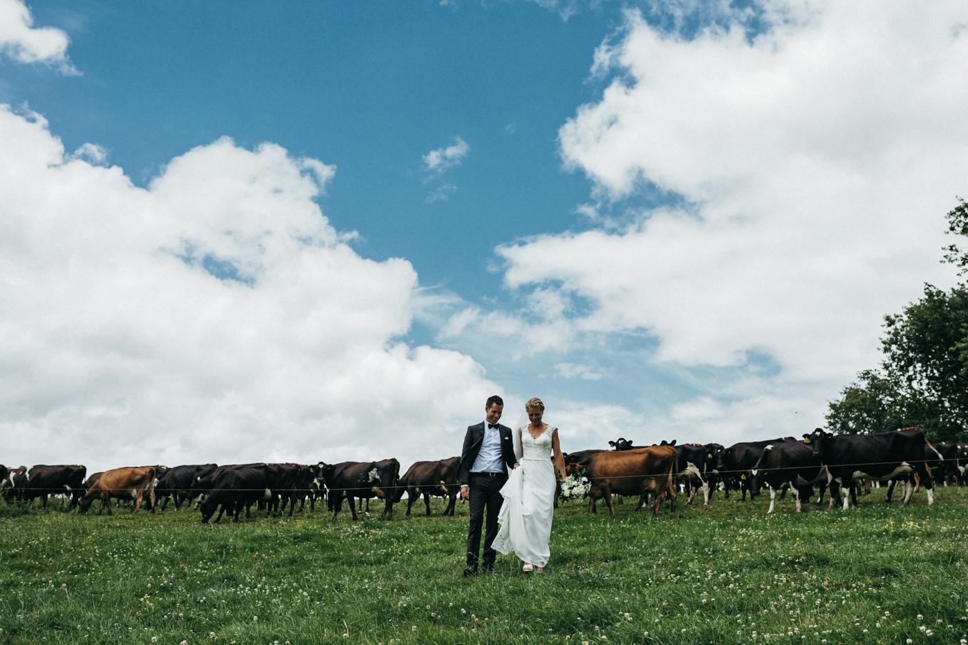 te_awamutu_wedding_photos-1088.jpg