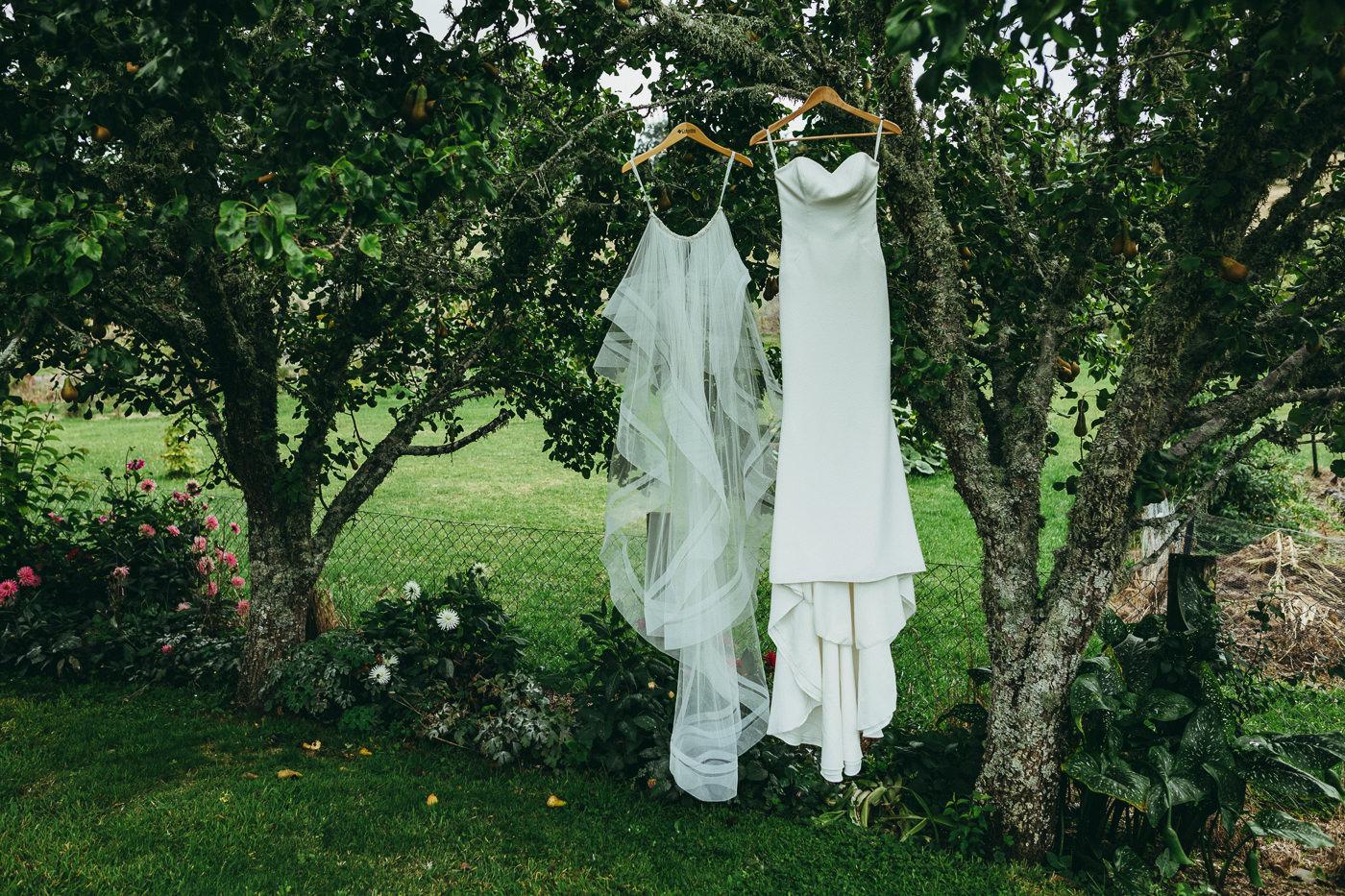 tauranga_wedding_photographers-1003.jpg