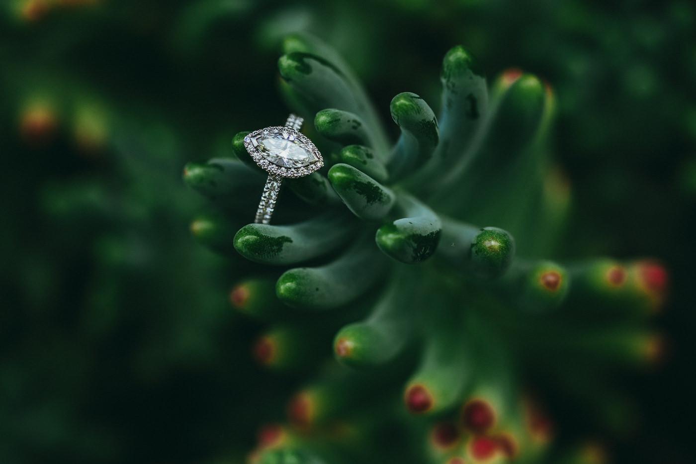 tauranga_wedding_photographers-1024.jpg