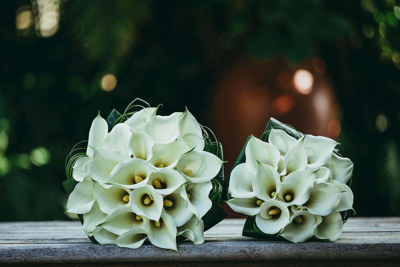 tauranga_wedding_photographers-1050.jpg