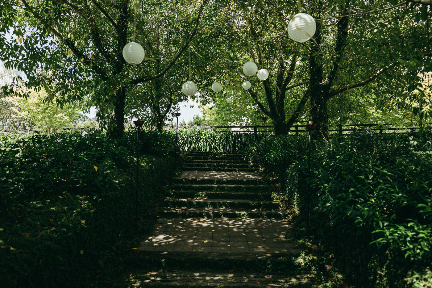 tauranga_wedding_photographers-1447.jpg