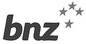 2bnz_logo.jpg