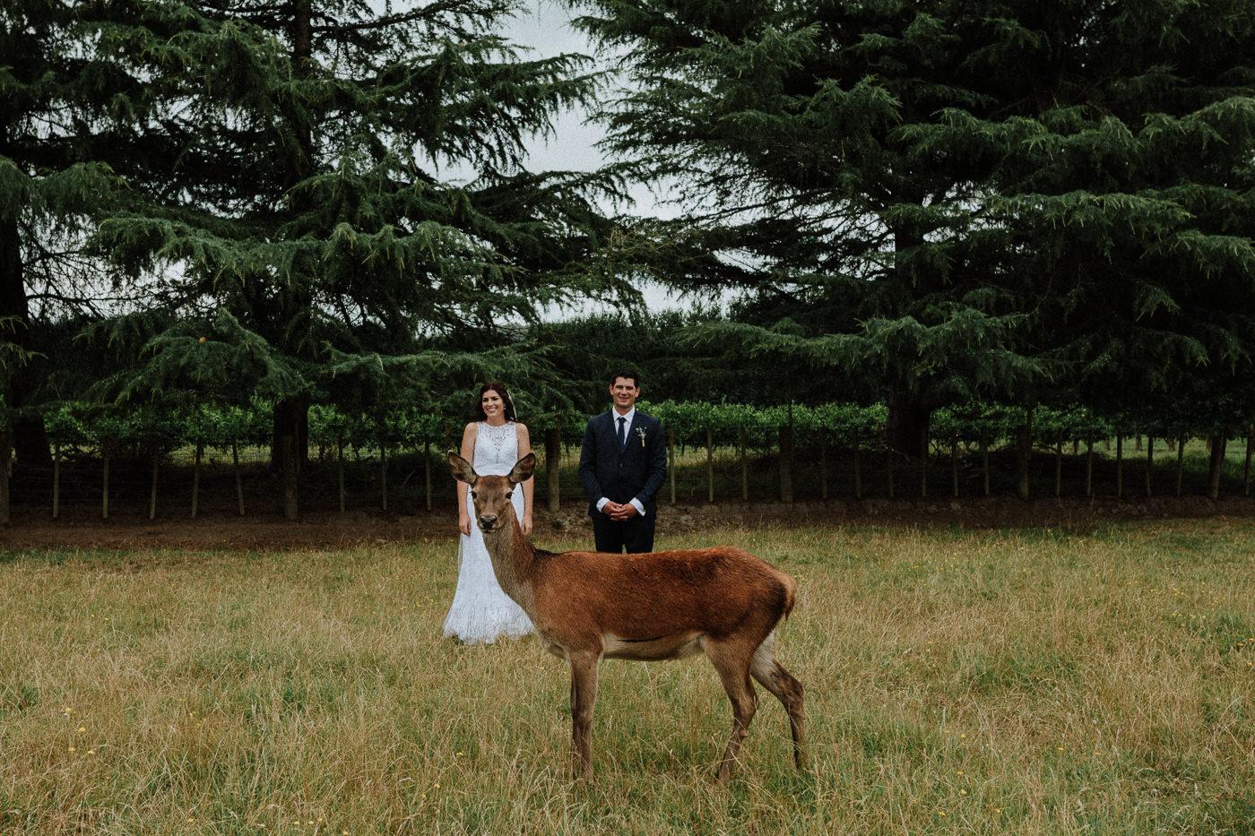 gisborne_wedding_photos