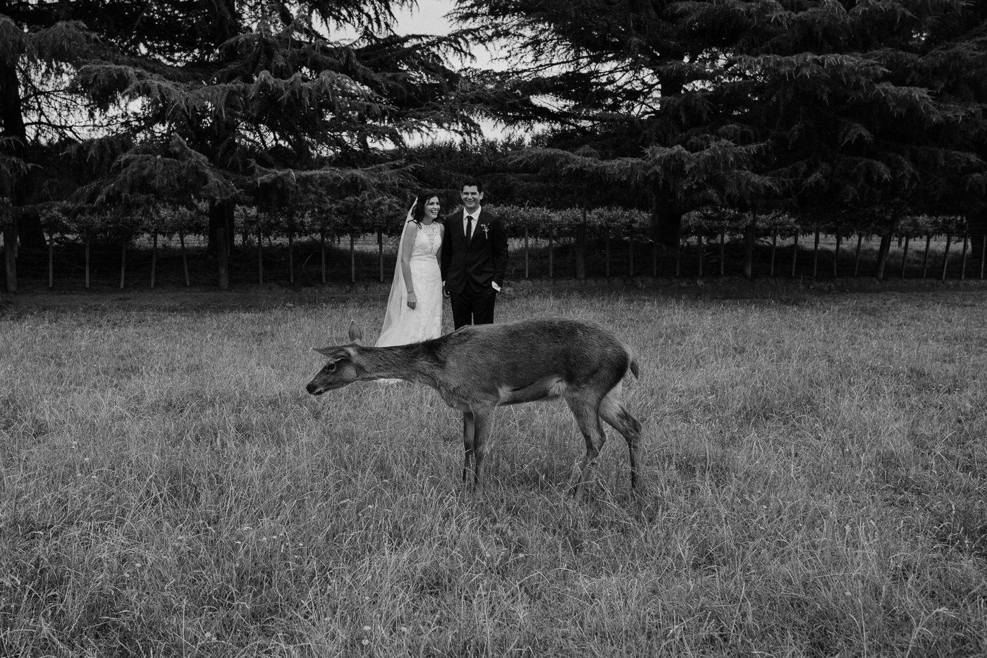 nz_wedding_photographer_gisborne-1057.jpg