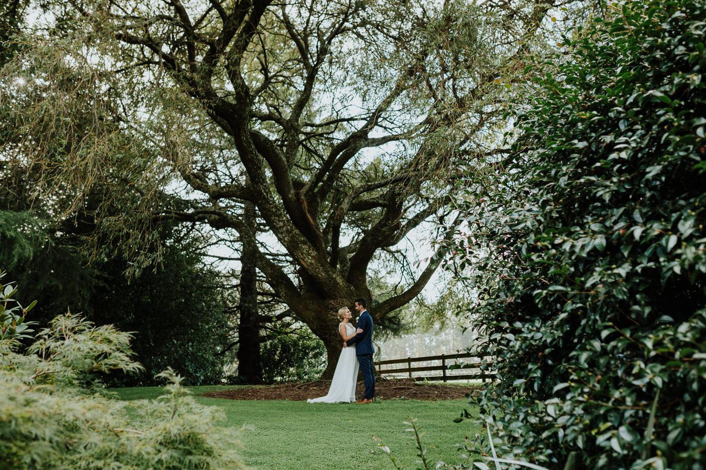 olive_tree_cottage_wedding_tauranga-1120.jpg