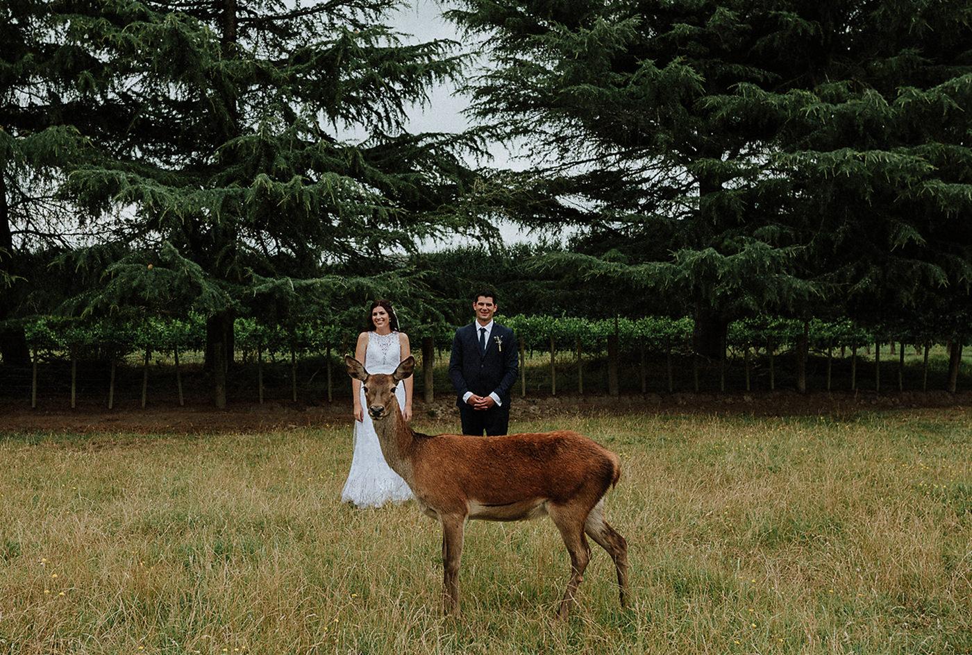 wedding_photographer_nz-00003.jpg