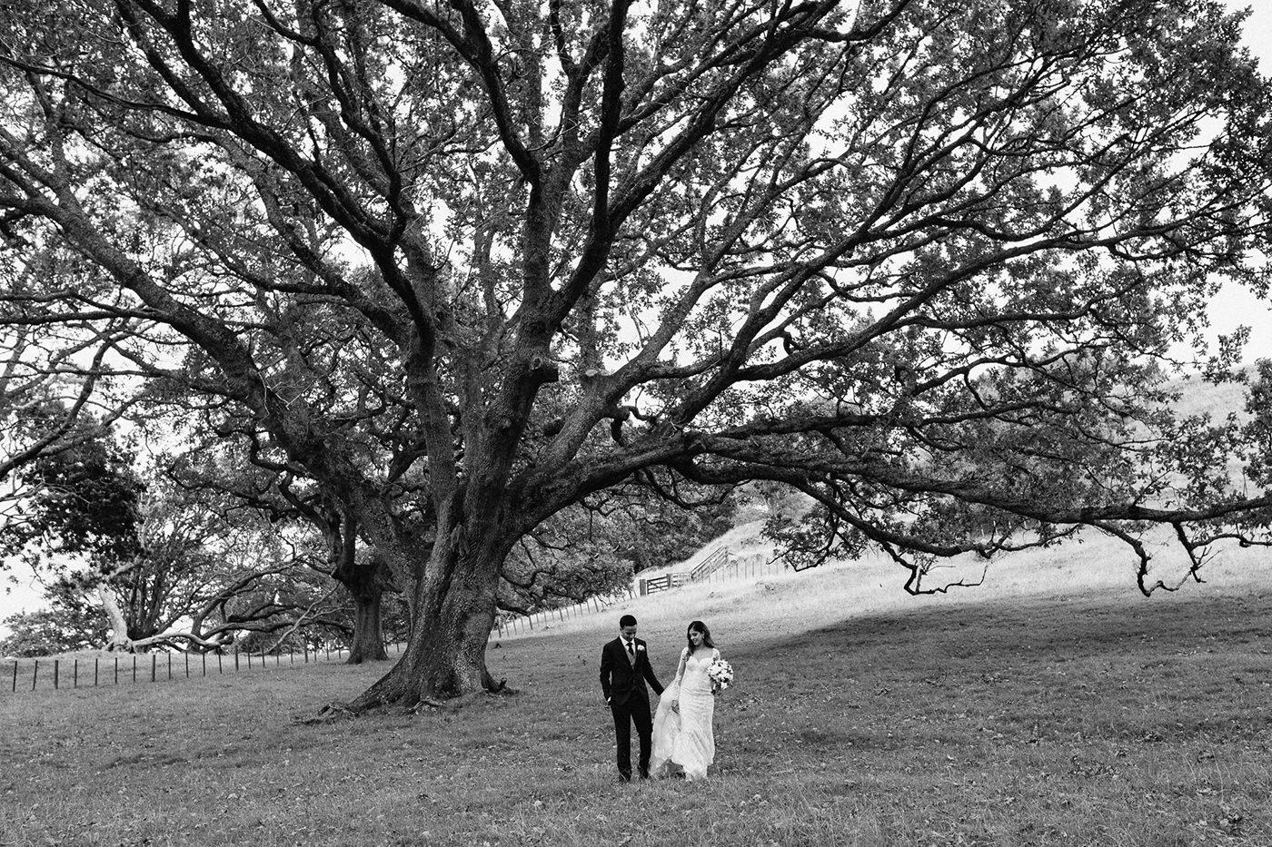 wedding_photographer_nz-00064.jpg
