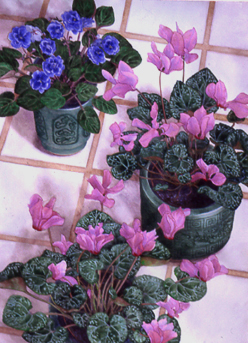 Three Chinese Pots ,watercolour, Jeannine Cook, Collection The Community Family, Everett, MA