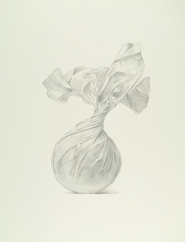 Tom Mazzullo - Upwrap, 2009, silverpoint on prepared paper, 12 in x 9