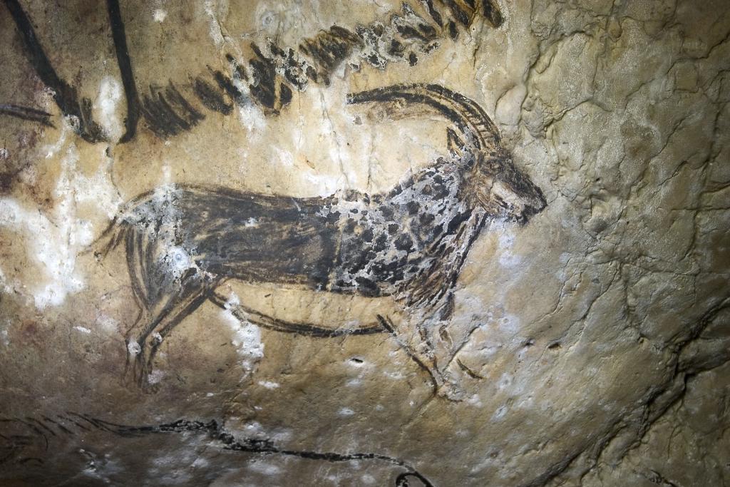 Grotte de Niaux, Salon Noir, ibex