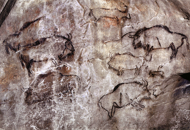 Grotte de Niaux, Salon Noir, panel 6, bison and ibex