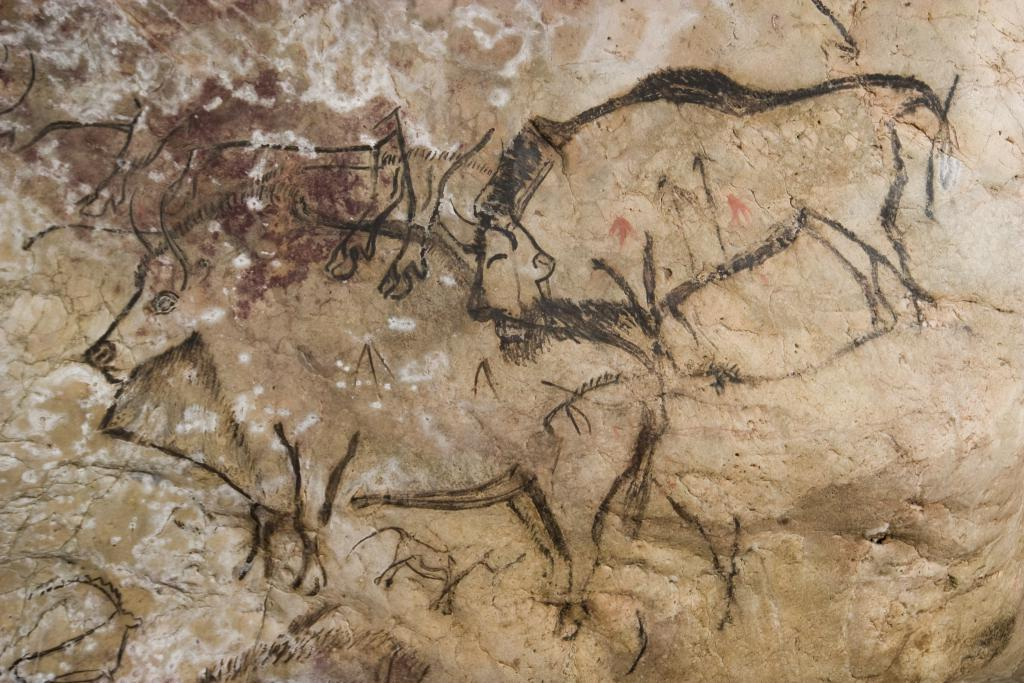 Grotte de Niaux, Salon Noir, superimposed bison and a horse