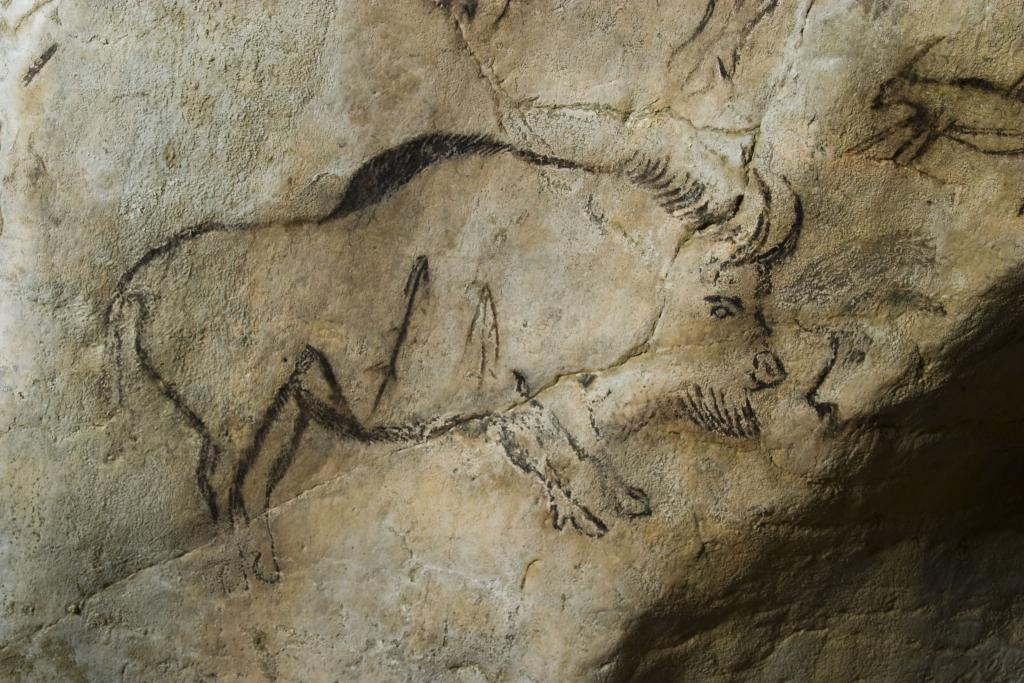 Grotte de Niaux, Salon Noir, bison