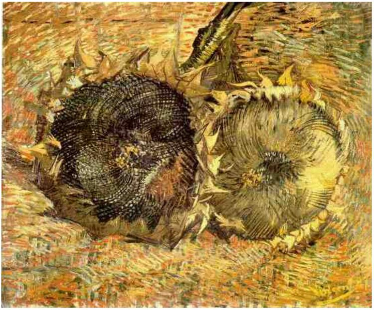 Two Cut Sunflowers, Vincent Van Gogh, 1887, oil on canvas, (Image courtesy of Kunstmuseum, Bern)