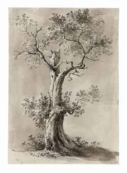 Jean-Jacques de Boissieu (Lyon, 1736-1810). Study of a blasted tree