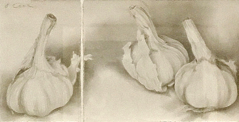 Garlic Discussion I & II, Jeannine Cook, silverpoint