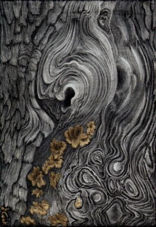 Cedar Swirls, gold and silverpoint, Jeannine Cook