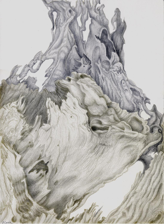 Cedar Remains , silverpoint, Jeannine Cook