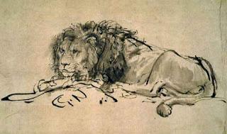 Extinct Cape Lion, Panthera leo melanochaitus, Rembrandt, 1650-52. Ink. Image courtesy of the Musee du Louvre