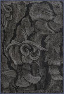 Jeannine Cook - Ariadne's Thread II - Pine Bark, silverpoint
