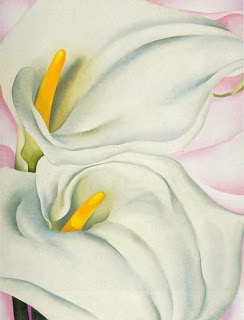 G. O'Keeffe,  Two Calla Lilies, 1928 (Image courtesy of the Philadelphia Museum of Art)