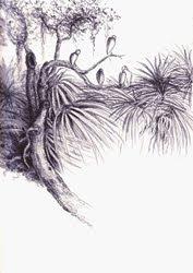 Dunham Farms, Midway - wood storks , graphite, Jeannine Cook artist