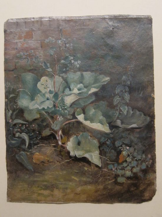 "Plants by a Wall, 1825, John Constable  - Not even ""under a hedge""!"