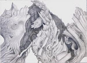 Cedar Lace, silverpoint, Jeannine Cook artist