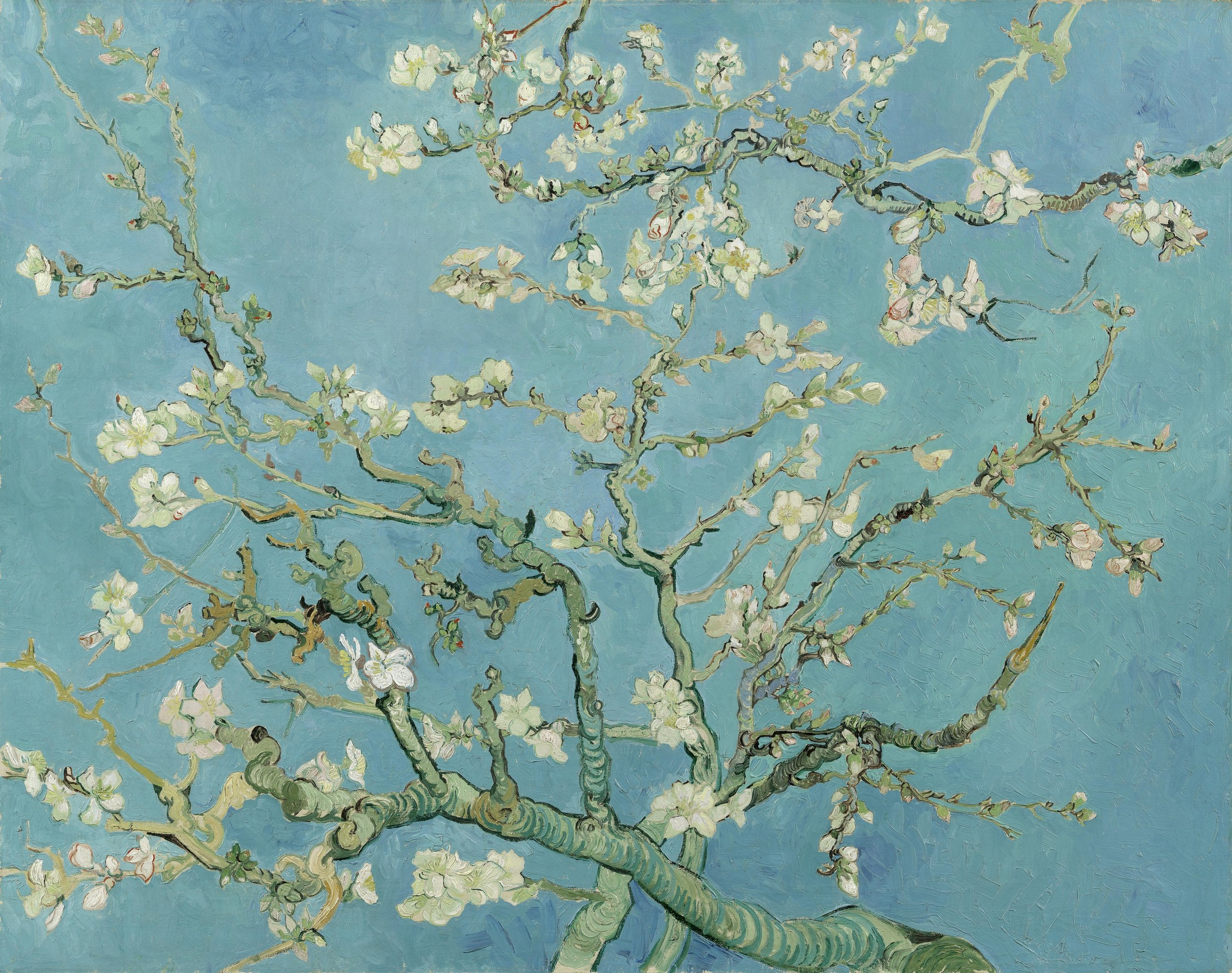 Almond Blossom,  Vincent van Gogh, 1890, oil on canvas.(Image courtesy of the Van Gogh Museum)