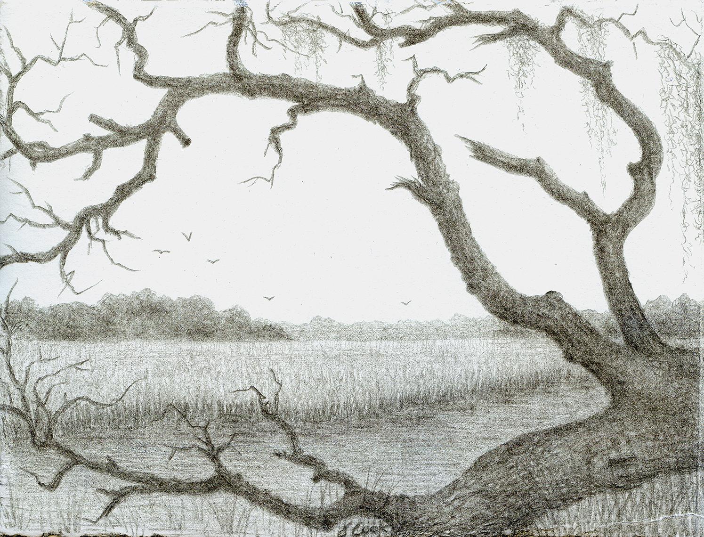 The Fallen Oak, silverpoint, Jeannine Cook artist