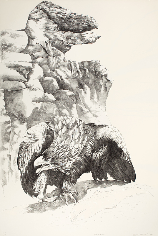Eagle Beak, Ellen Lanyon, 1985. Lithograph, 44 ½ x 30 ¼ inches. Collection of the Madison Museum of Contemporary Art.