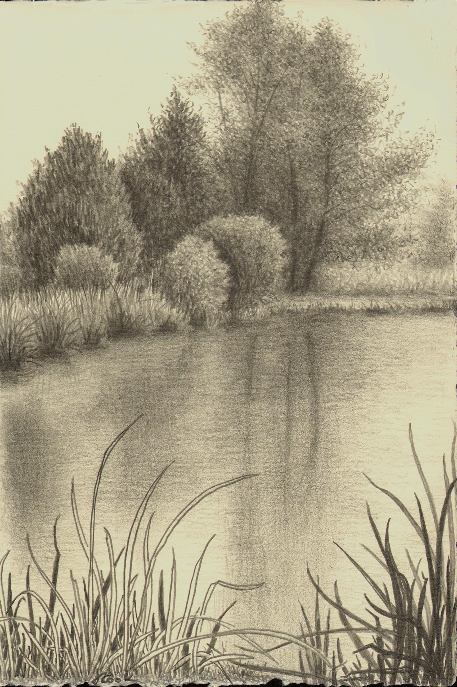 March at Butler Island, graphite, Jeannine Cook artist